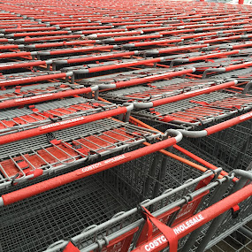Grocery Carts by VAM Photography - Abstract Patterns ( grocery carts, patterns, long island, places, repetition,  )