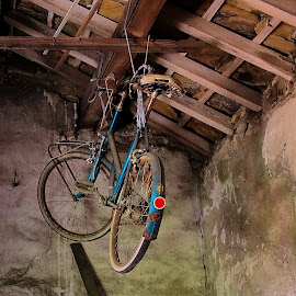 Barn Find Bicycle by Colin Wood - Transportation Bicycles (  )