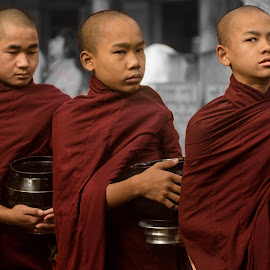 Lunch Time by Justine Carlyle - People Street & Candids ( myanmar, monks, boys, monastery, alms, line, lunch, burma, young,  )