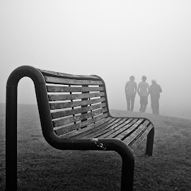 Fogy Day  by Mian Mubeen - City,  Street & Park  City Parks ( foggy, park, bench, black and white )