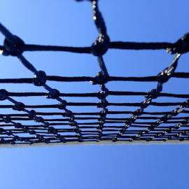by Thomas Polk - Sports & Fitness Tennis ( tennis net, tennis, photo stream, tennis court, tennis ball )