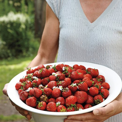Danish Strawberries with Elderflower Cream