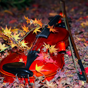 Violin by Nyoman Sundra - Artistic Objects Musical Instruments ( violin, autumn, still life, artistic object, leaves )