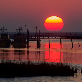 red sun by Edith Polverini - Landscapes Sunsets & Sunrises ( water, red, sunset, boats, sun, red sun )