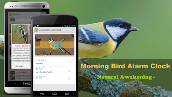 Screenshot of Bird Quiz Alarm Clock