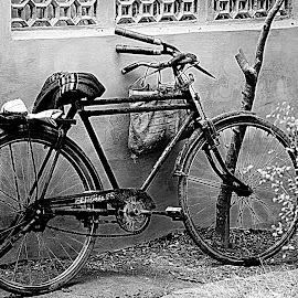 by Abhay Desai - Transportation Bicycles