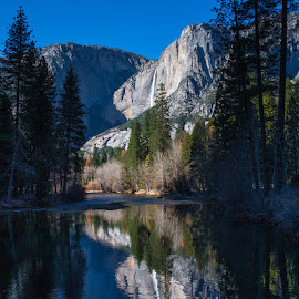 Yosemite Falls reflecting in the Merced River by Richard Duerksen - Landscapes Mountains & Hills ( national park, yosemite, reflections, merced river )