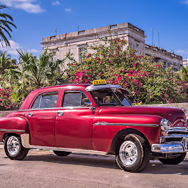 Plymouth in Havana by Jack Brittain - Transportation Automobiles ( fuji x100, plymouth, havana, cuba )