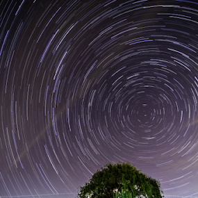 North Star by MIGUEL CORREA - Landscapes Starscapes ( stars, trail, star, star trail, north star )