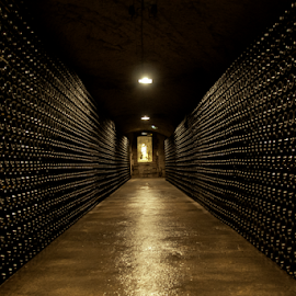 Moet cellar by Mihai  Costea - Buildings & Architecture Public & Historical ( champagne, cellar, maturation, moet, vault, winery )