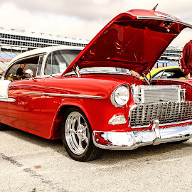 55 Chevy by Randy Belt - Transportation Automobiles ( car, automobile, car show, transportation, hot rod )