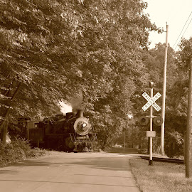 Steam train on the go by Janice Burnett - Transportation Trains ( steam engine, locomotive, steam train, scenic train ride, nostalgia )