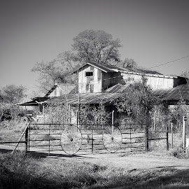 Old Barn by Nikki Chisolm - Black & White Buildings & Architecture