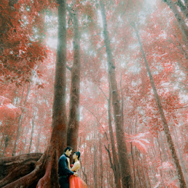 Sign of Love by Amin Basyir Supatra - Wedding Bride & Groom ( love, bali, wedding, couple, botanical garden, bride & groom )