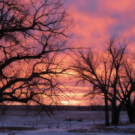 good morning.. 11/22/14 by Stephanie Eayrs - Novices Only Landscapes
