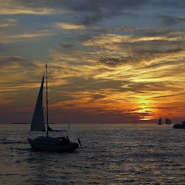 by Jadwiga Dabrowski - Landscapes Sunsets & Sunrises ( clouds, sunset, sailboat sunset clouds, sailboat )