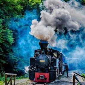 © Costel Ciobanu by Costel Ciobanu - Transportation Trains (  )