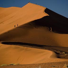 Hiking the dune by Gene Myers - Landscapes Deserts ( contrast, sand, hikers, sand dune, color, gene myers, namibia, , #GARYFONGDRAMATICLIGHT, #WTFBOBDAVIS )