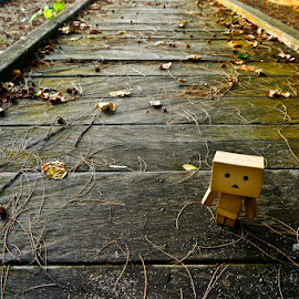 by Tedy Arifin - Artistic Objects Still Life ( danbo, still life, artistic, leaf )