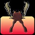 Frog Raider icon