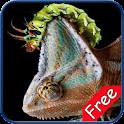 Chameleon+ Free