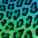 Cute Cheetah Keyboard Skin icon