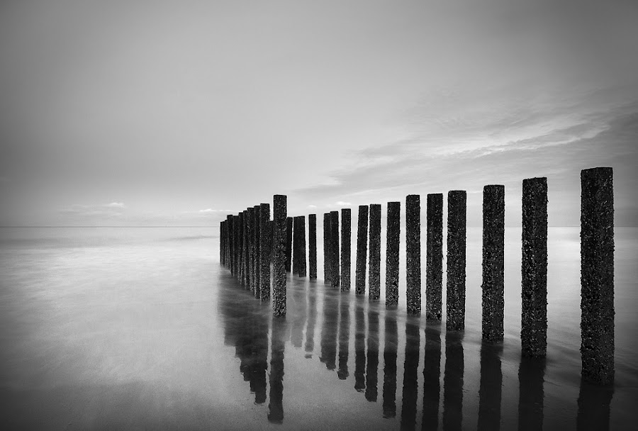 Poles by Pascale Schotte - Black & White Landscapes ( reflection, black and white, long exposure, seascape, poles )