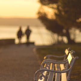 Sunset In The Park by Luka Popadić - City,  Street & Park  City Parks ( sigma 85mm f1.4, pentaxk5, park, bench, sustipan, sunset, luka popadić, croatia, split, zalaz )