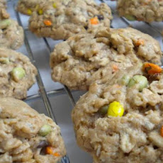 Indian Sunflower Cookies