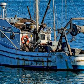 The Fishing Boat by Barbara Brock - Transportation Boats ( california coastline, motor boat, food producer, fishing boat,  )