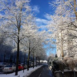 Sunny day by Darkeyes Photography - City,  Street & Park  Neighborhoods ( sun snow photography )