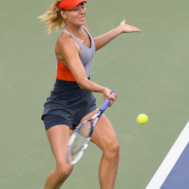 Maria Sharapova by David Freese - Sports & Fitness Tennis ( sharapova, tennis, us open )