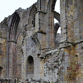 Ruins of the Priory (Bolton Abbey) by Vida Jankaitiene - Buildings & Architecture Decaying & Abandoned ( building, abandoned )