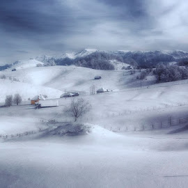 Winter silence by Mihail Dulu - Landscapes Mountains & Hills