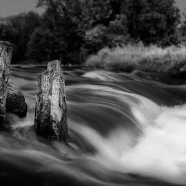 by Edvinas Cepukenas - Nature Up Close Water