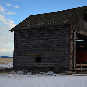 by Selah Madland - Buildings & Architecture Other Exteriors ( old, winter, sky, cold, barn, tractor )