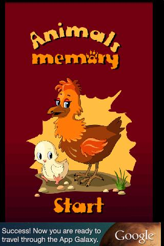 FGG Memory Animals
