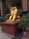 农村商业银行门前金色大狮子左