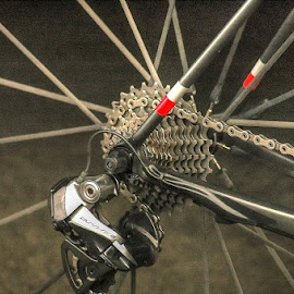 Gears by Peter Spagnuolo - Sports & Fitness Cycling