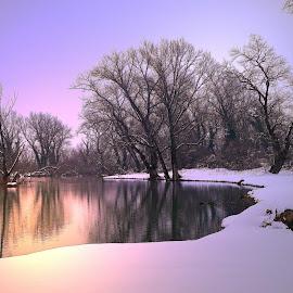 Evening at the lake by Dunja Dretvić - Landscapes Weather