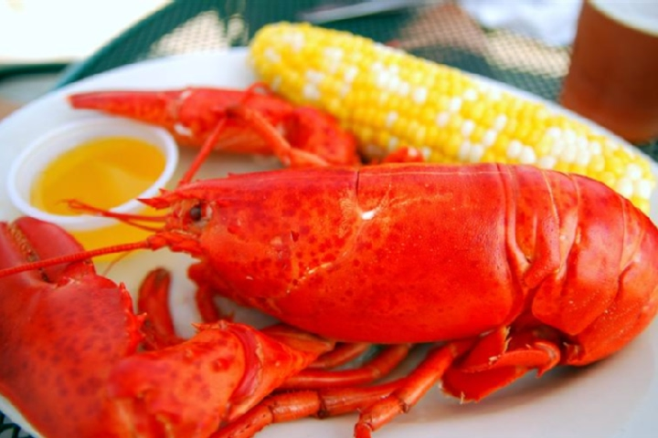 Steamed Lobsters
