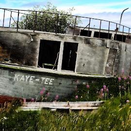 by Marlene Hickling - Transportation Boats