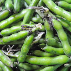 Fresh Fava Beans, Two (Easier) Ways