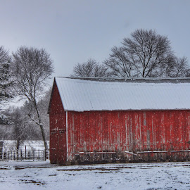 I Felt the Chill Before the Winter Came by Kim Thomas-Hein - Buildings & Architecture Other Exteriors ( field, farm, winter, barn, snow, landscape )