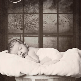 Dreamy by Darya Enchanted Images - Babies & Children Babies ( window, bascket, sleeping, baby, boy, newborn )