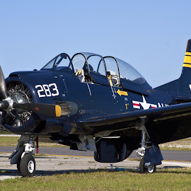 T-28 Trojan by Jim Baker - Transportation Airplanes