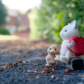 School time by Ruth Holt - Novices Only Objects & Still Life ( school, seat, wait, sylvanian, prepared, ready, school bag )