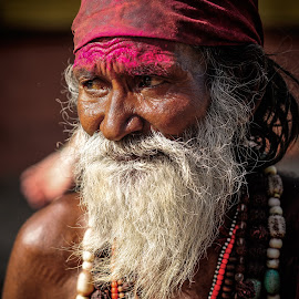 Faces of India by Dimitar Pavlov - People Street & Candids ( faces of india, piligrim, india )