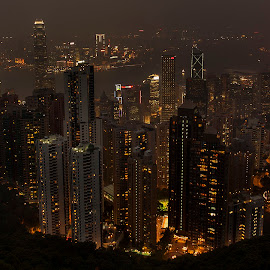 The Peak by Purito Rosero - City,  Street & Park  Skylines ( lights, hong kong, bay, peak, buildings, night, city )