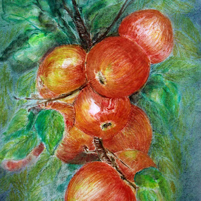 Apples by Jasna Dragun - Painting All Painting ( nature art, fruits, painting,  )